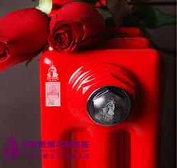 钢制暖气片用什么品牌的好