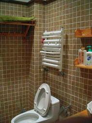 铜铝复合卫浴暖气片金旗舰十大品牌